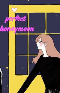 Perfect Honeymoon