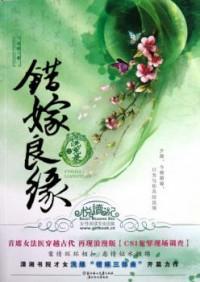 Cuo Jia Liangyuan Zhi Xi Yuan Lu (Novel)