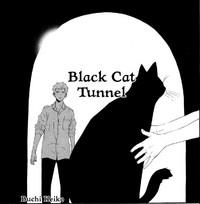 Black Cat Tunnel