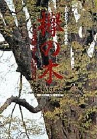 Keiyaki no Ki